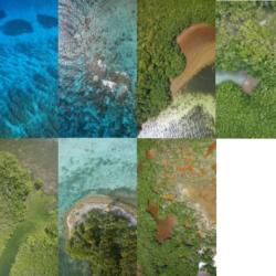 Marine environment habitats by Aeromapper Talon Amphibious water landing drone Belize